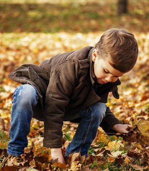 toddler-in-the-park-1995818_960_720.jpg