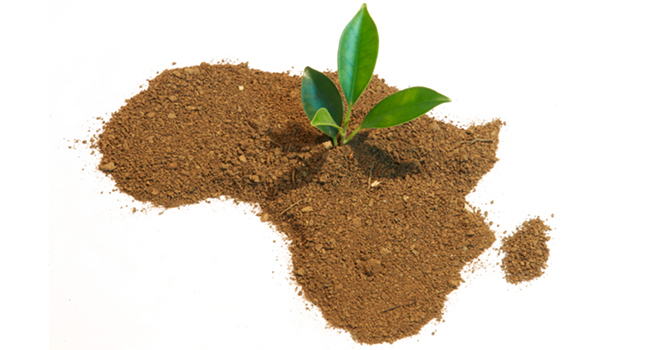 Africa-Map-growth-startups-entrepreneur.jpg
