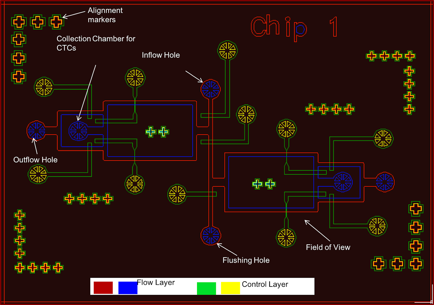 AutoCad device design to extract CTCs from mouse blood.