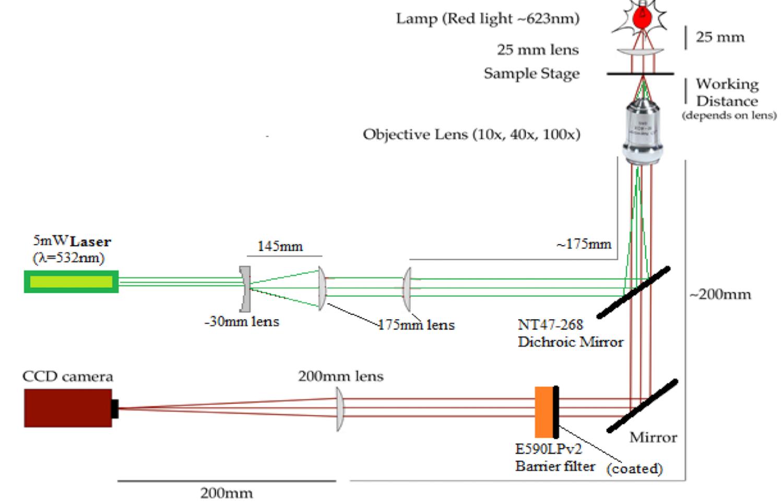 2D sketch of the fluorescence microscope design