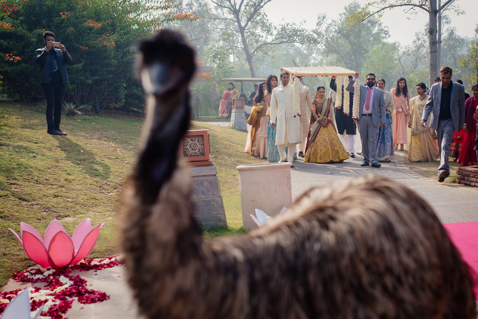wedding1-313.jpg