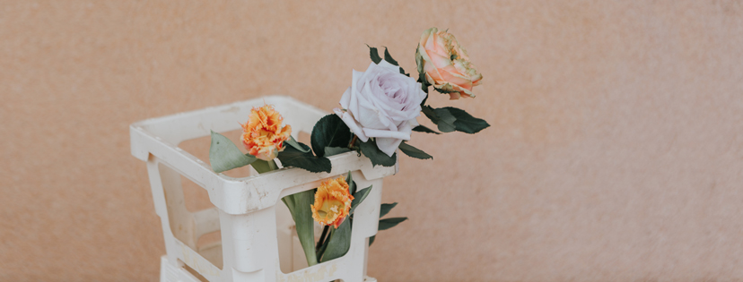 fiori-fb banner.jpg
