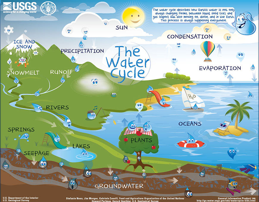 The Water Cycle: Beginners