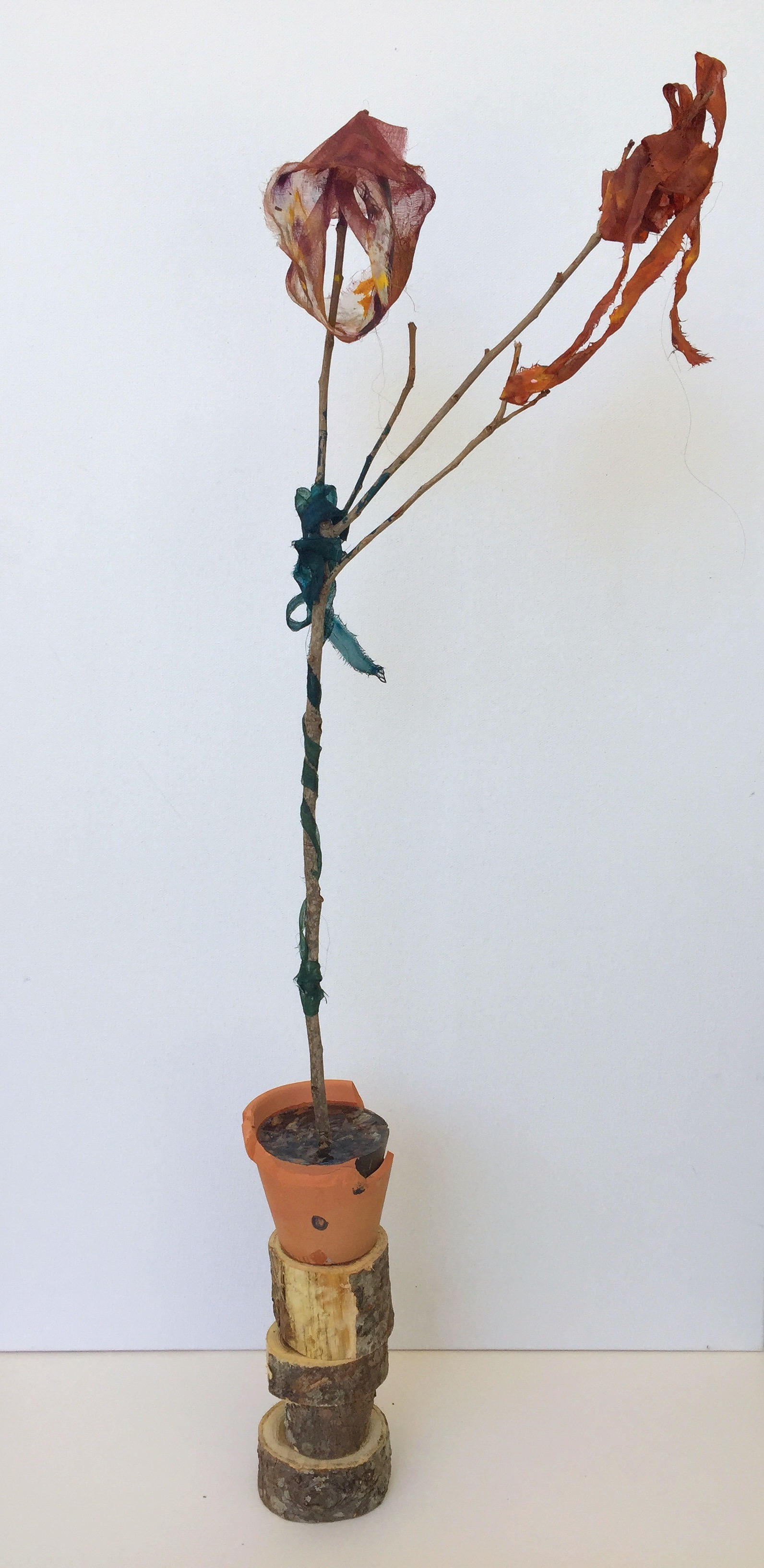 Stretching,  2018, clay, oak, acrylic resin, debris, acrylic paint, branch