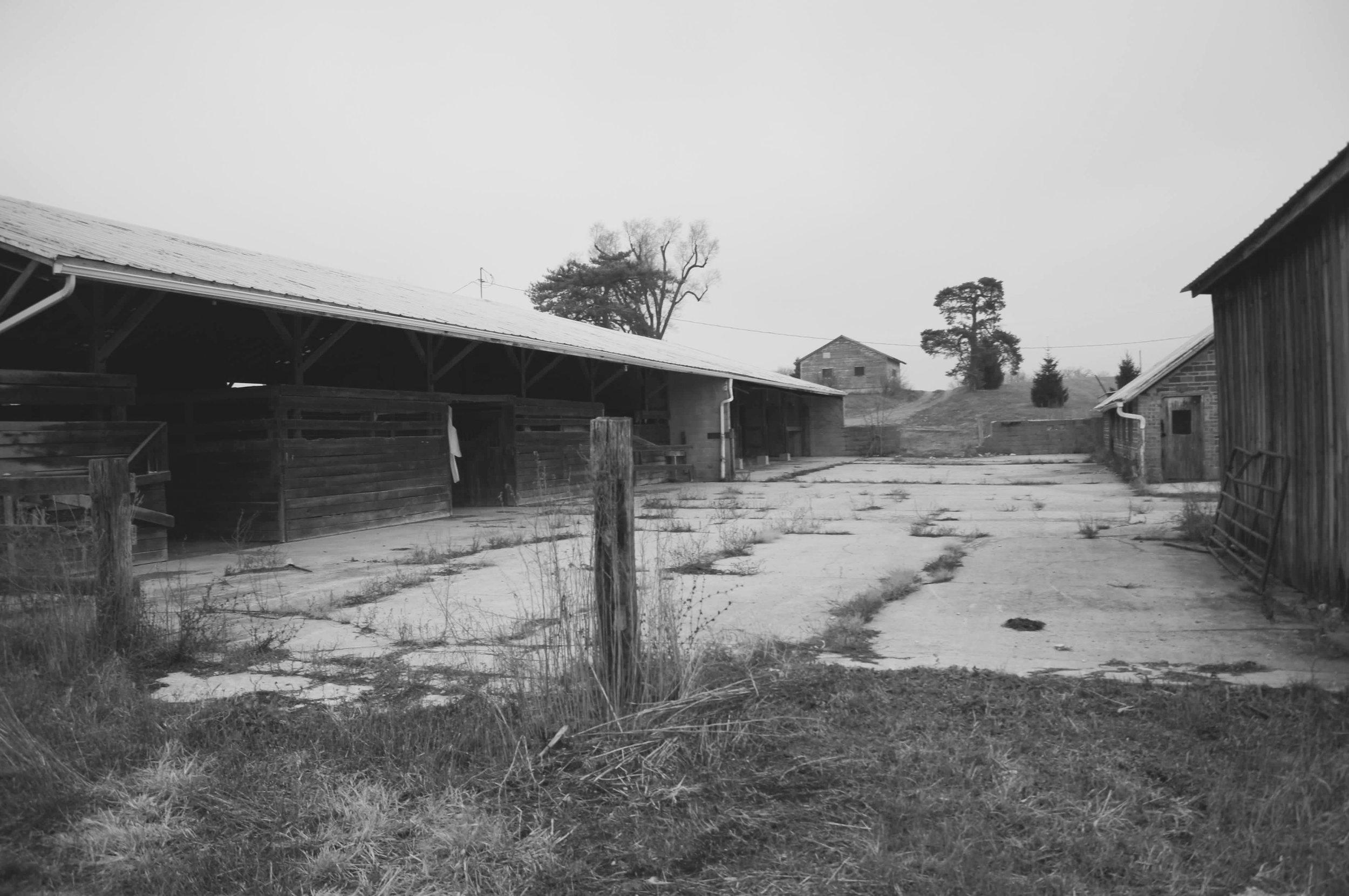 barn before2 bw.jpg
