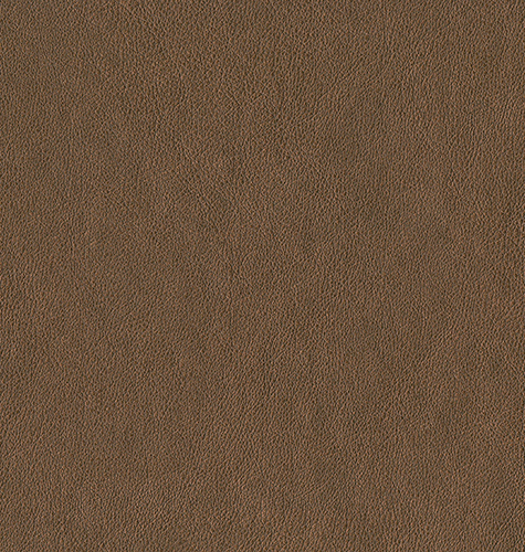 Dining Room chairs leather.jpg