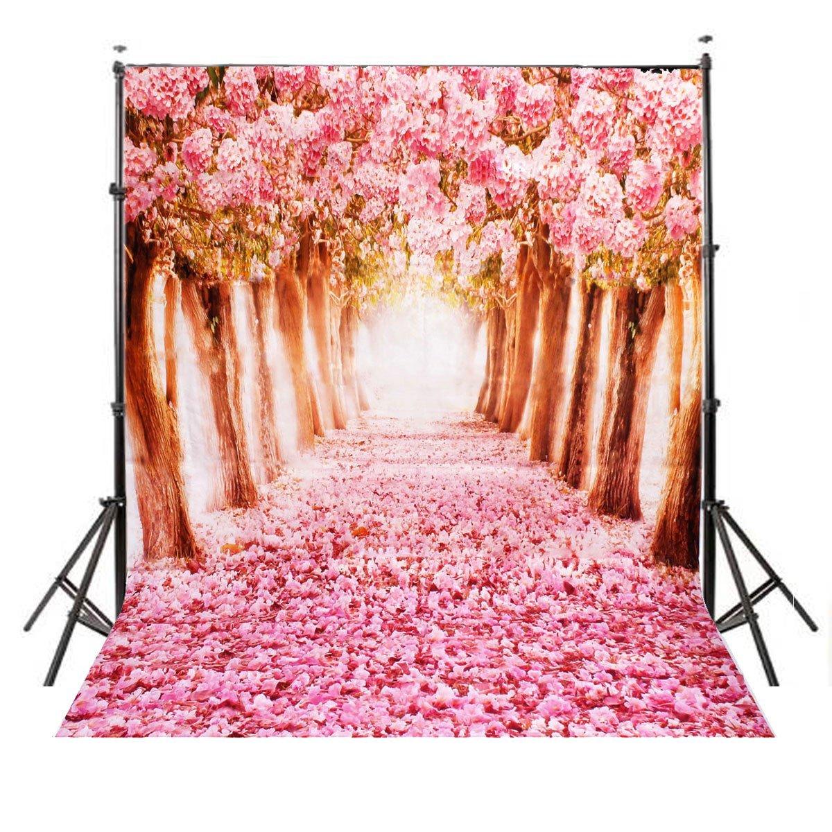 Cherry Blossoms -