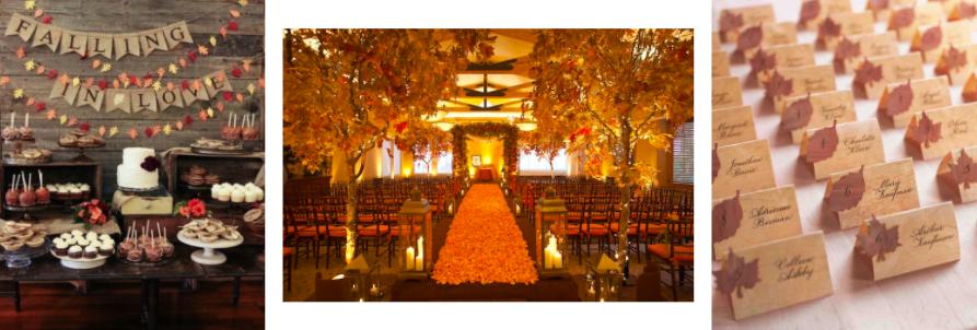 MODwedding                            Southeast Texas Weddings                       Martha Stewart Weddings