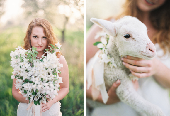 This lamb is the cutest!  Photo by  Cory Weber Photography
