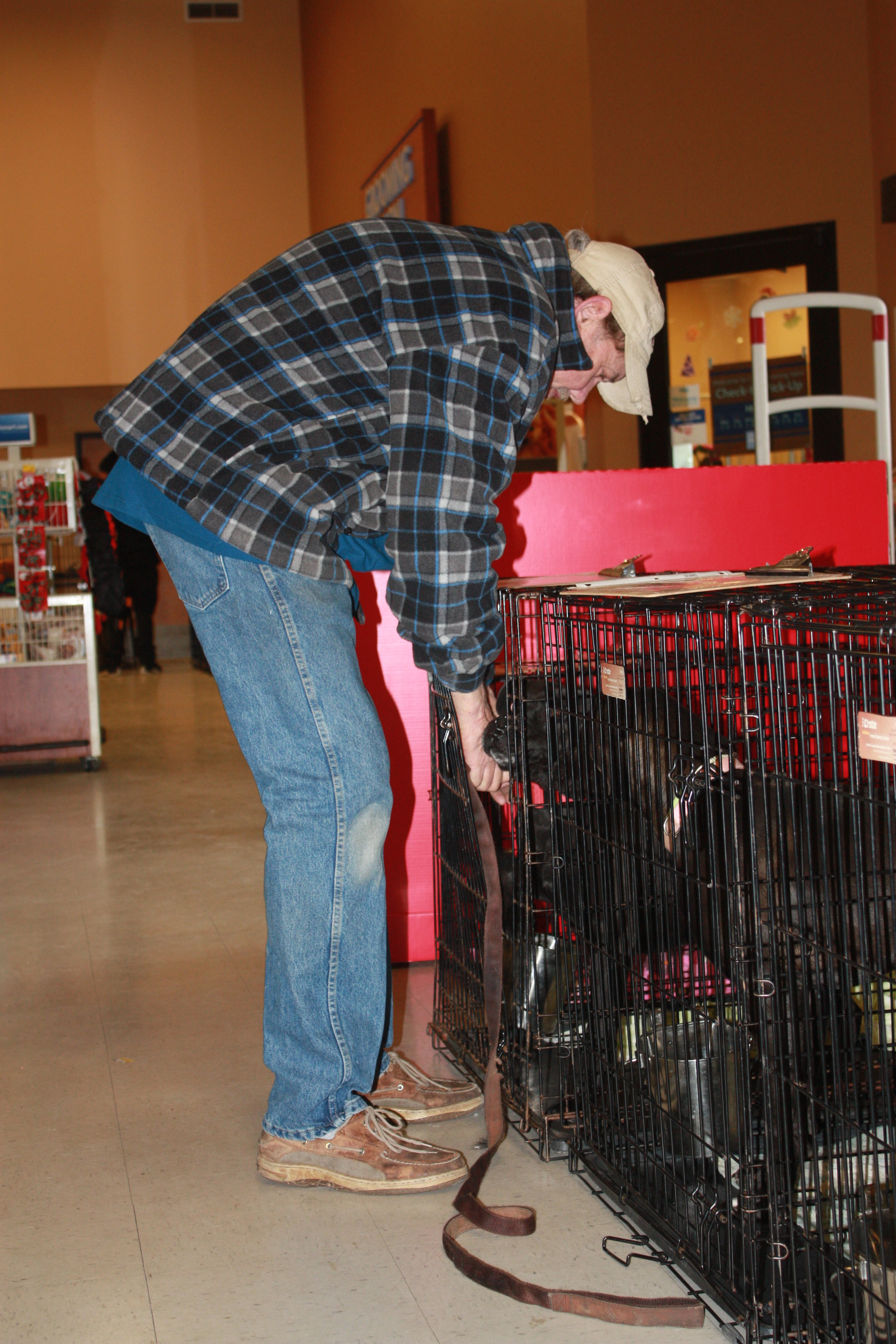 Bruce, caring for out dogs at PetSmart.