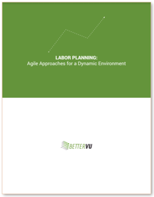 Workforce Planning Strategies White Paper  Labor Planning: Agile Approaches for a Dynamic Environment