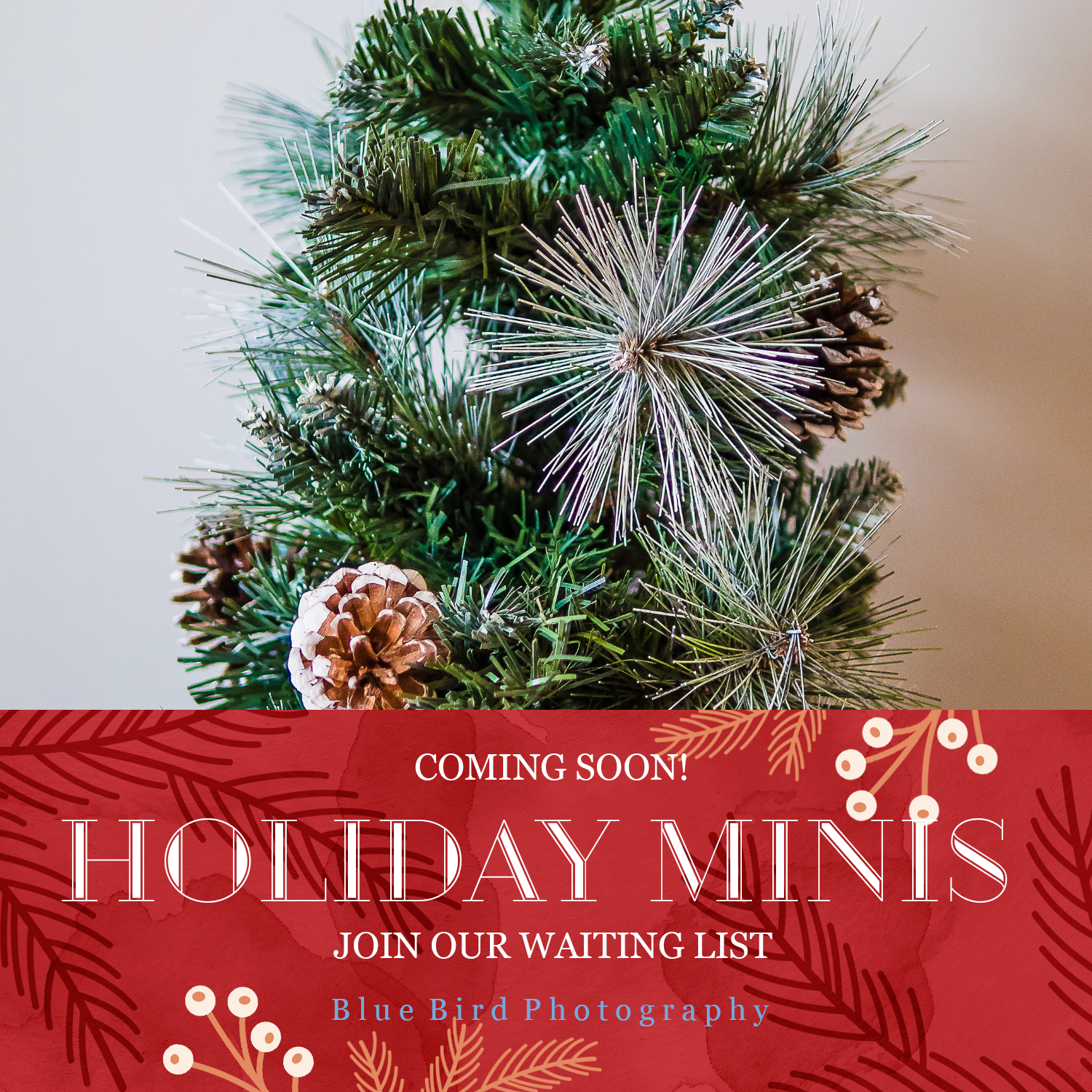 Holiday Mini SEssion.png