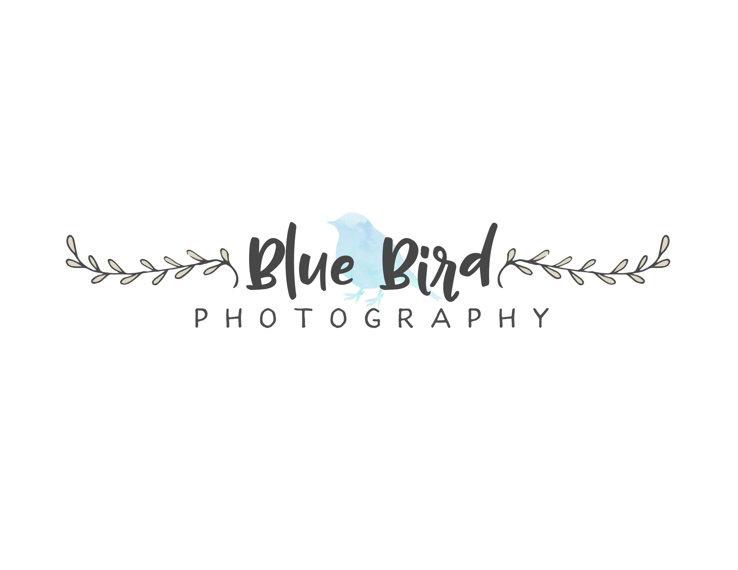 blue bird logo 1.jpg