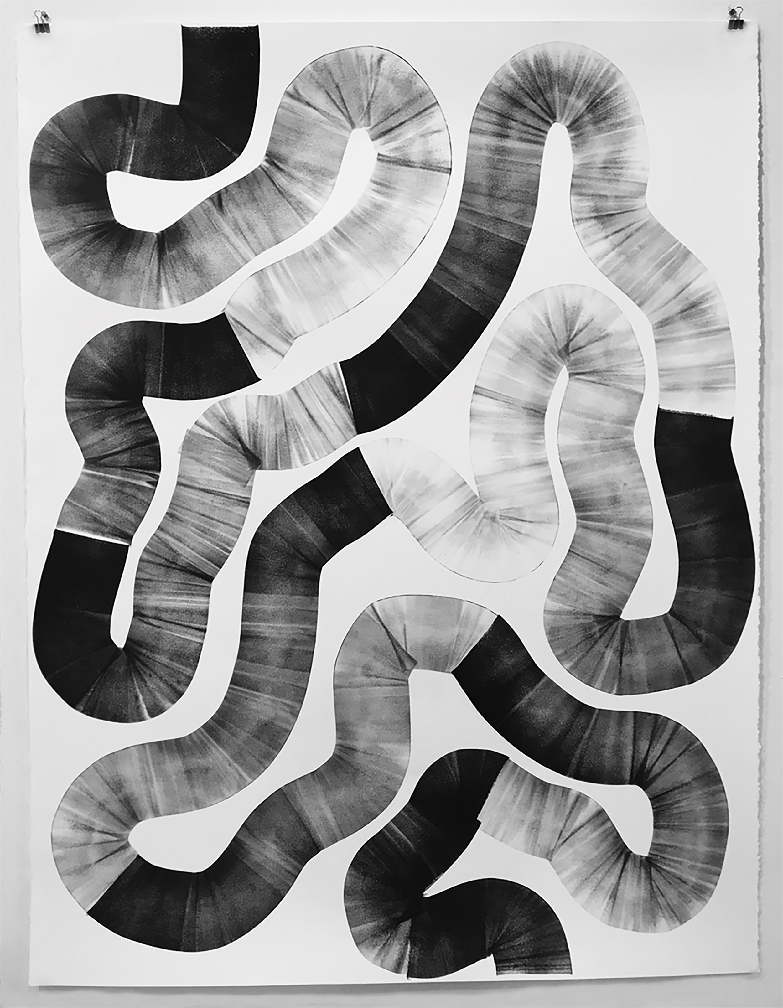 Watching a Snake Snake Through the Plane, 2018, litho ink on paper, 50 x 38 inches