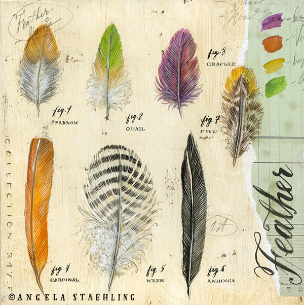 Nature's Feathers 3