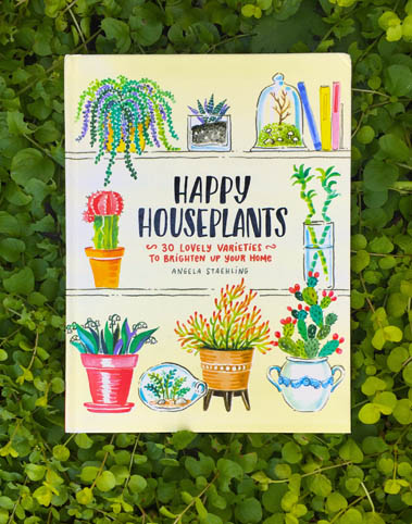 Happy Houseplants Staehling1.jpg