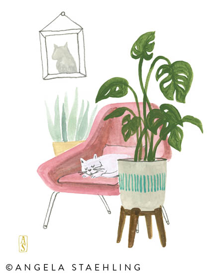 Monstera with Cat