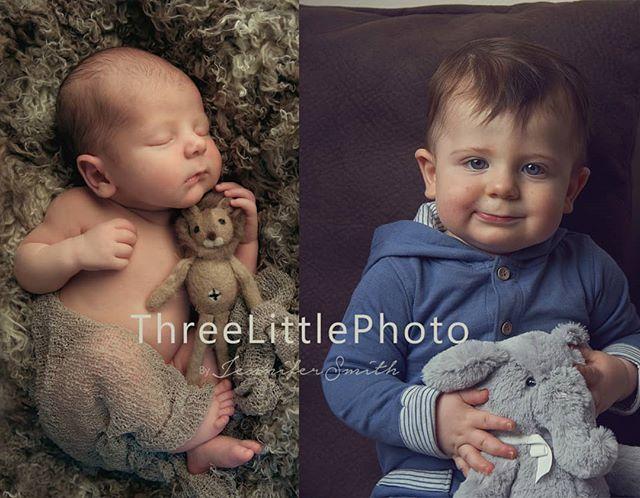 Newborn to 12months! Happy Birthday, Roman! 😍🖤🧁 #TLPhoto #TLP #threelittlephoto #storyteller #candidchildhood #fromhearttoeye #newbornart #newbornphotohrapher #cincinnatinewbornphotographer #cincinnati #fairfieldmom #cincinnatian #cincinnatiphotographer #newbornphotography #cincinnatiphotography #newbornphoto #fairfieldohio #fairfieldphotographer #newbornart #newbornphotographyartist #newbornphotofairfieldohio #childphotography #cincinnatinewbornphotographers #childphotography