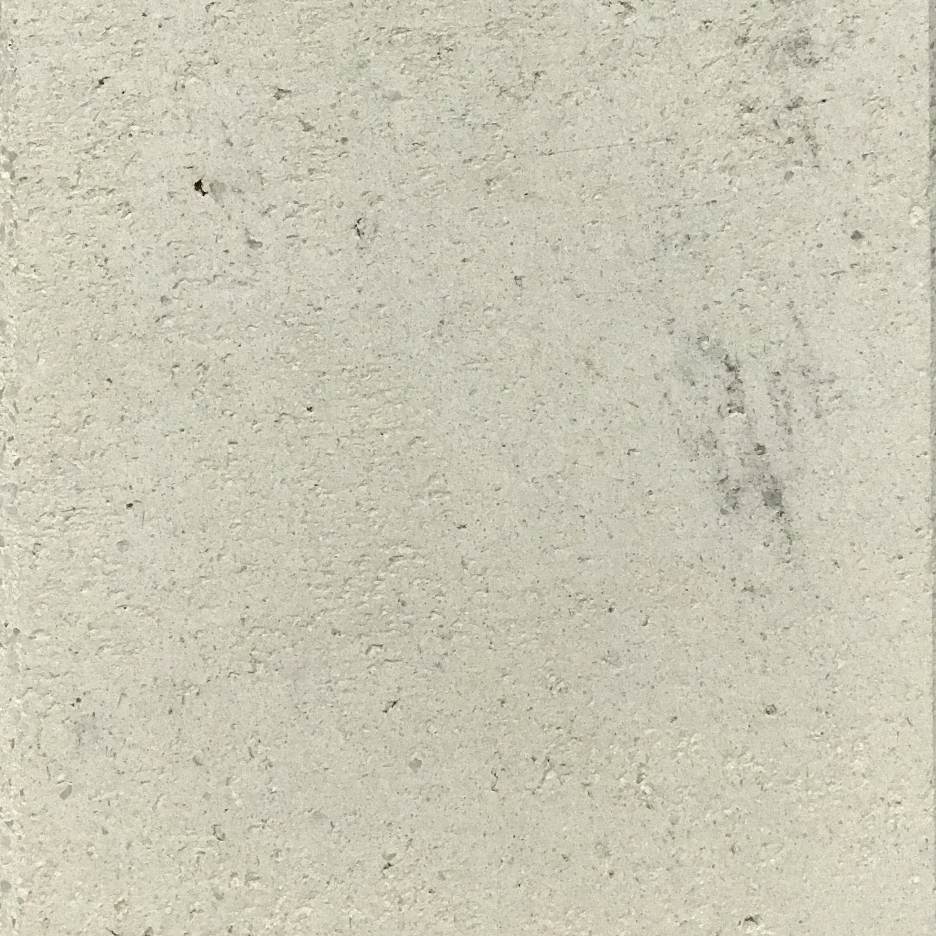 sample 81
