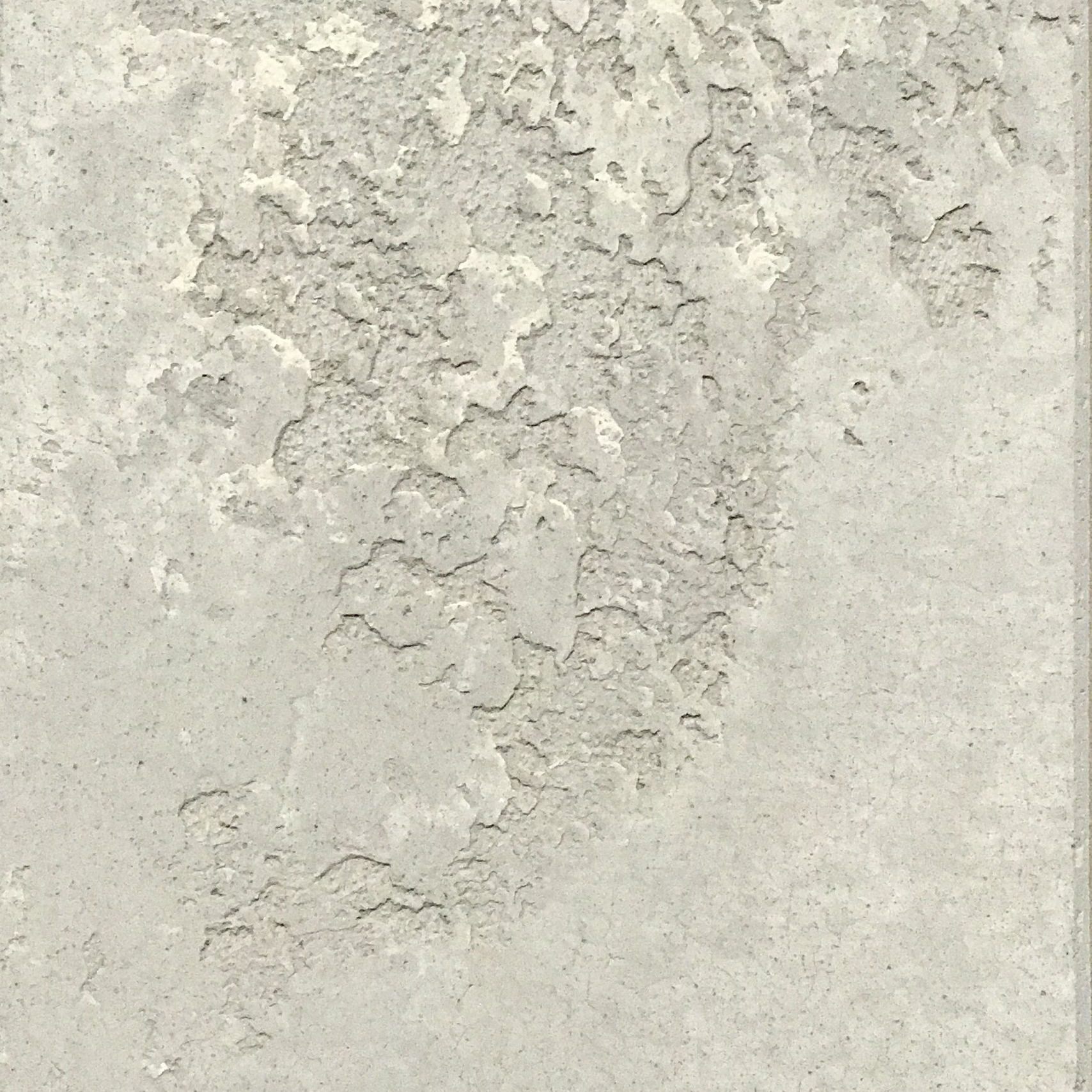 sample 141