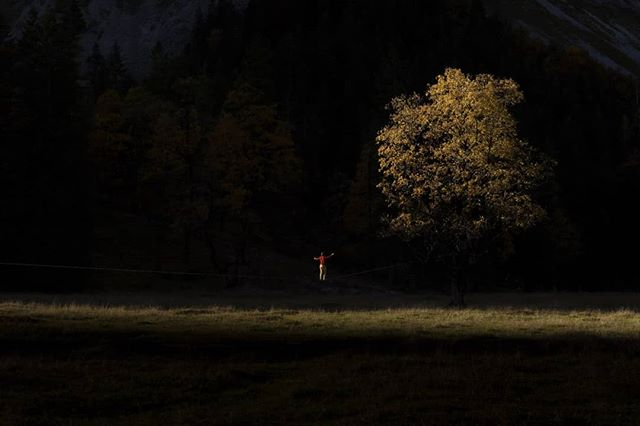 """""""Autumn begins to decorate the ground with its fragile bits of loosened gold."""" - Teresita Fernández  Alexander dancing above a carpet of golden leaves and pastures 🍁🍂 Autumnal mood. Secret spot, Tyrol.  #indiansummer #autumnleaves #goldenleaves #goldentrees #bergherbst #naturescolors  #fall #oneinchawayfromflying #oneinchdreams #slackline #slacklining #highline #highlining #outdoor #adventure #liveyourdream #slacklife #balancecommunity"""