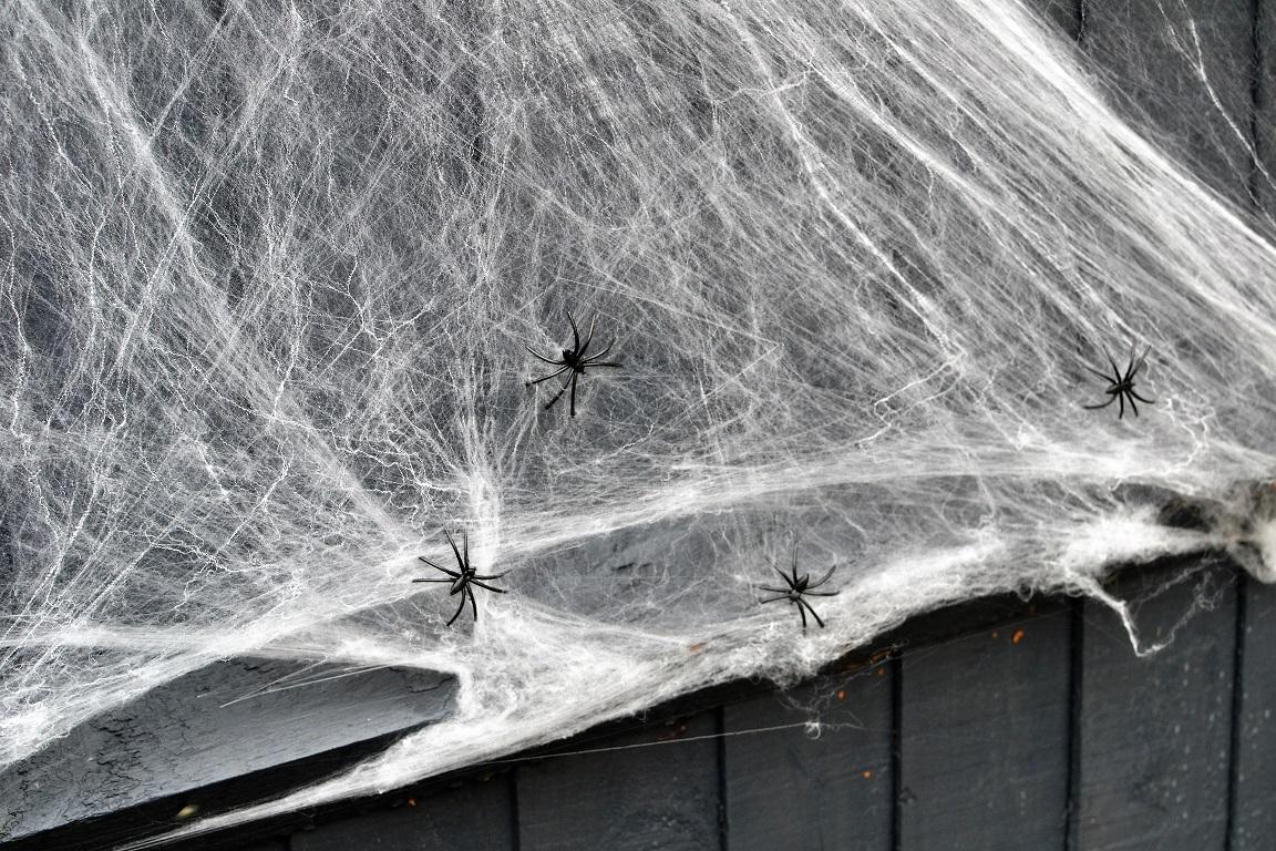 Fake spiders.jpg