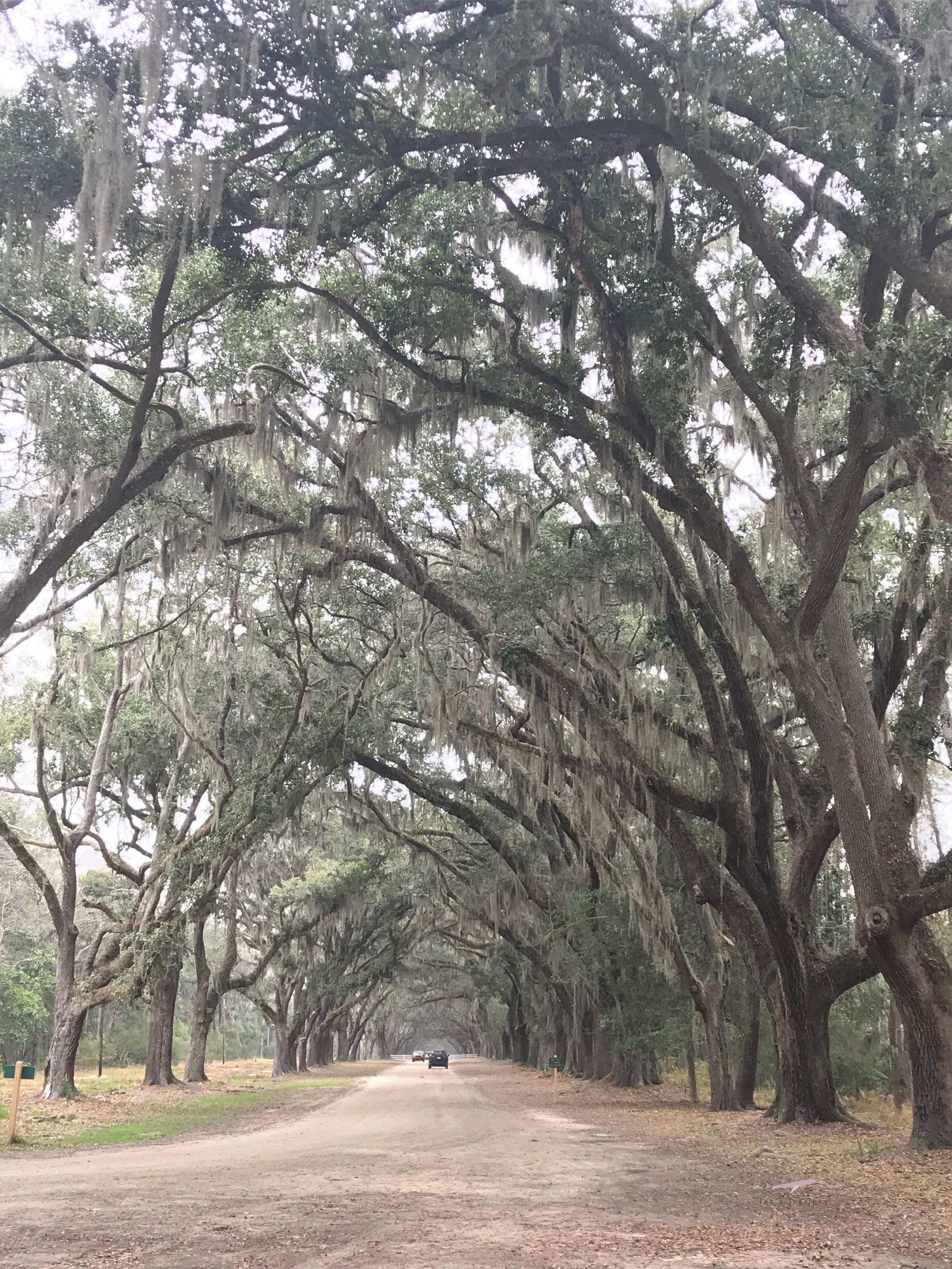 Wormsloe Historic Park