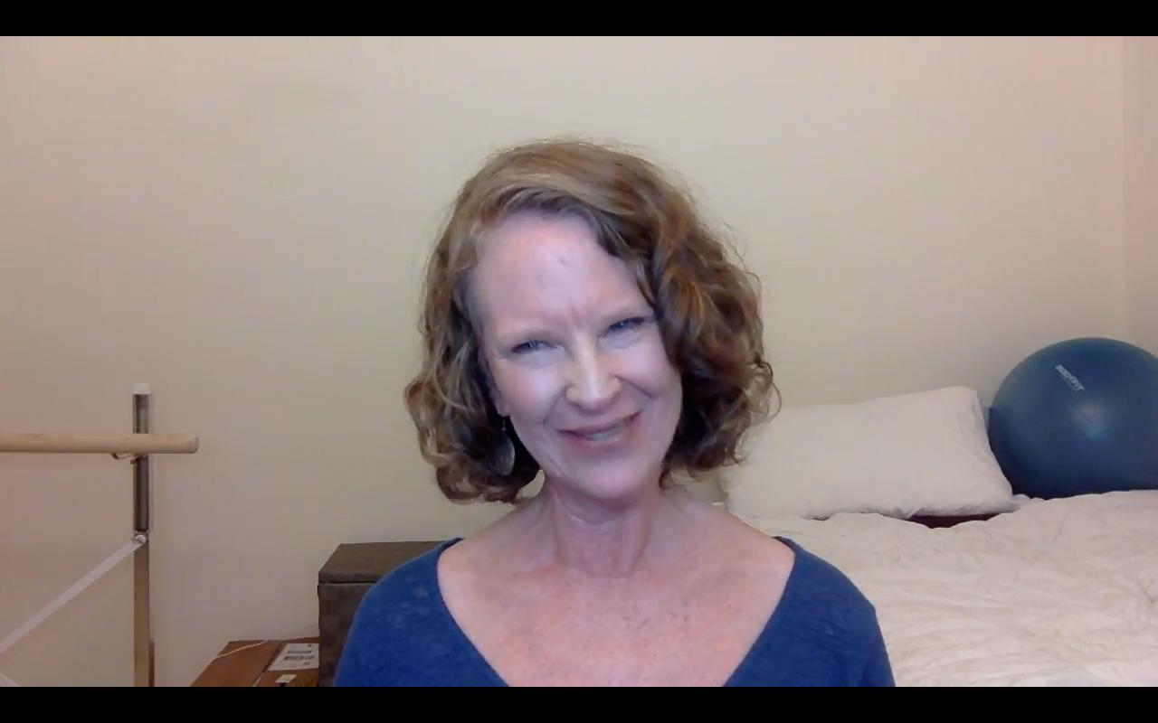 Screenshot. Click to watch Mel's Holman pitch video.