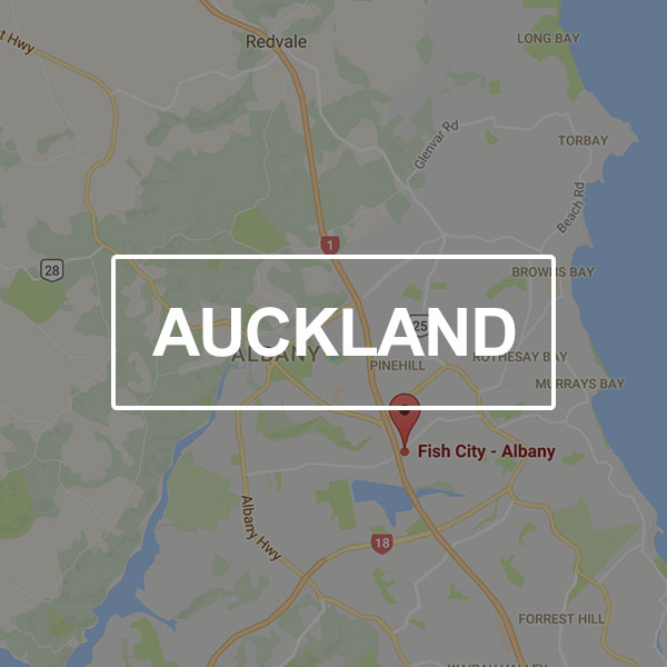 Fish-City-Landing-Page-Auckland.jpg