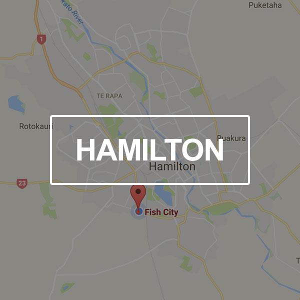 Fish-City-Landing-Page-Hamilton.jpg