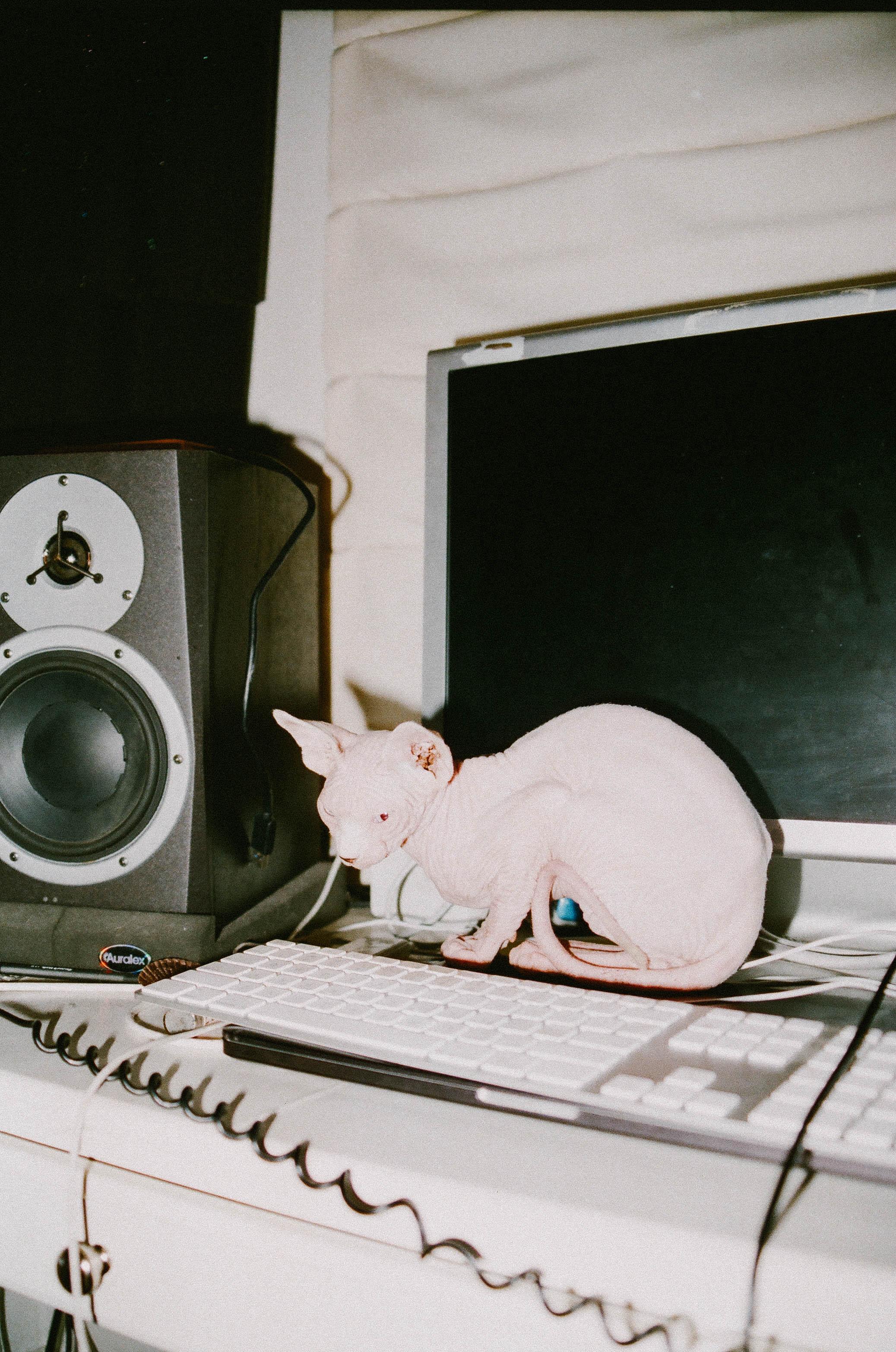 studio-22.jpg