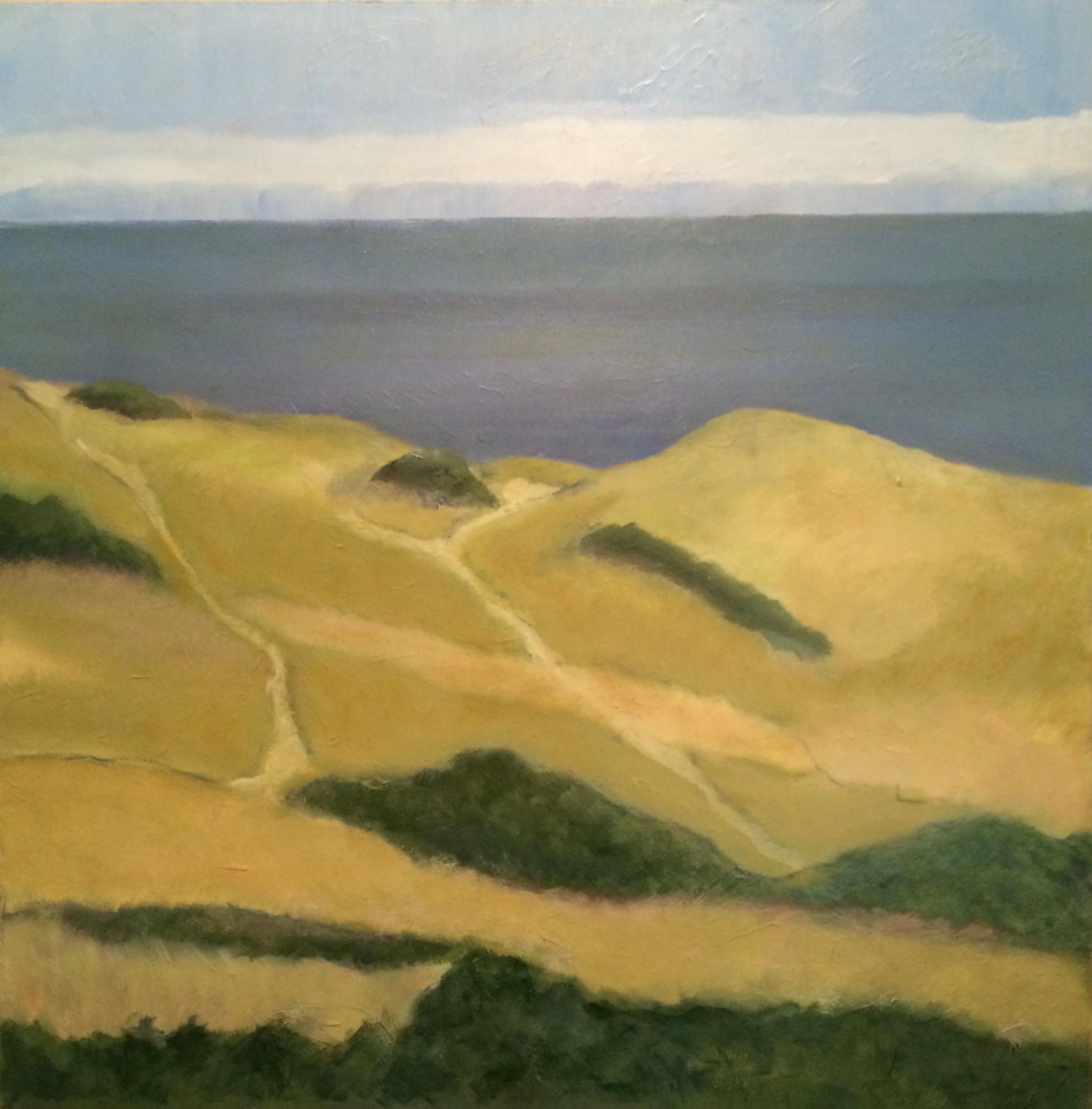 Ocean Cliff Truro