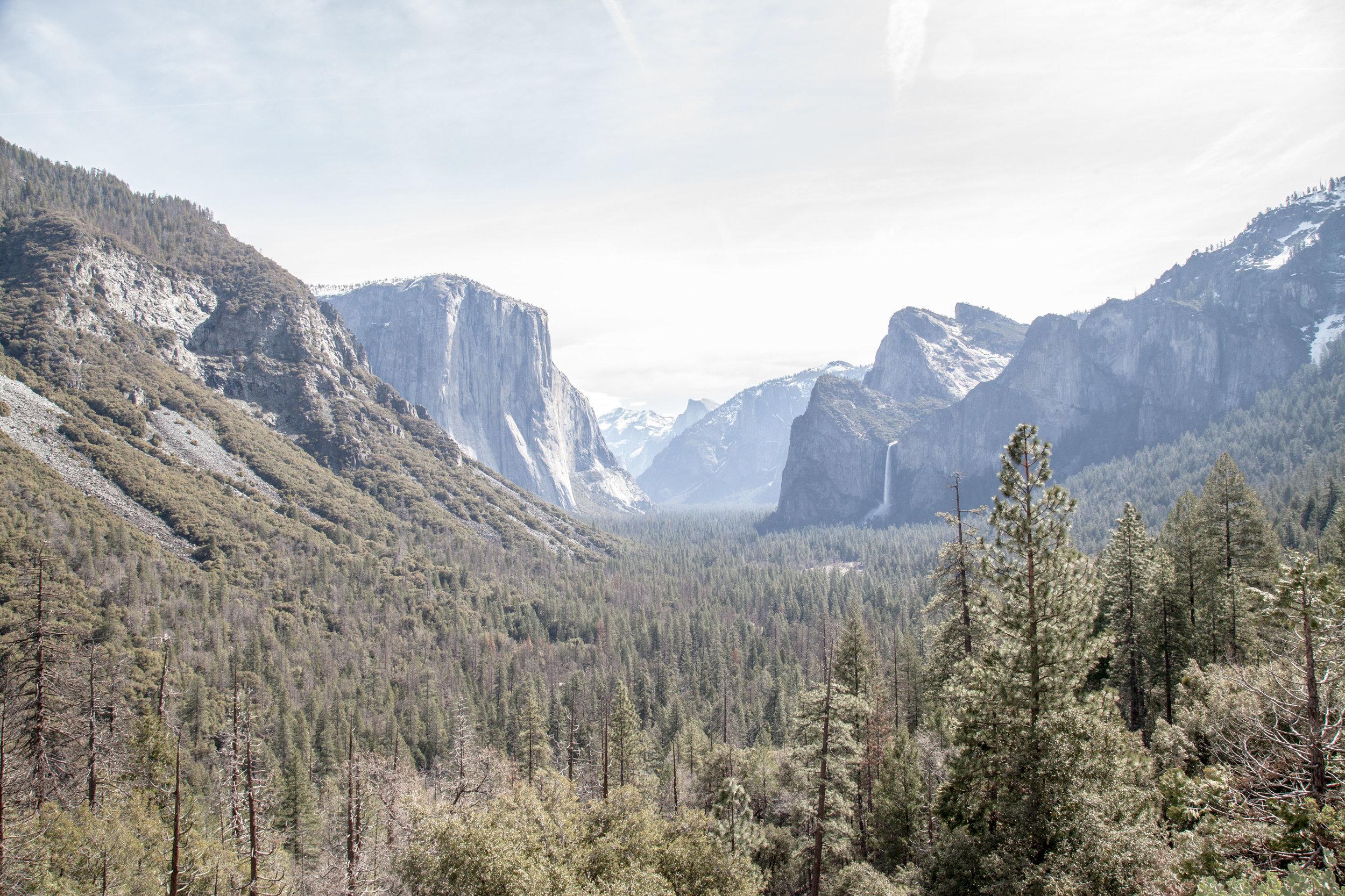 Yosemite1136-826.jpg