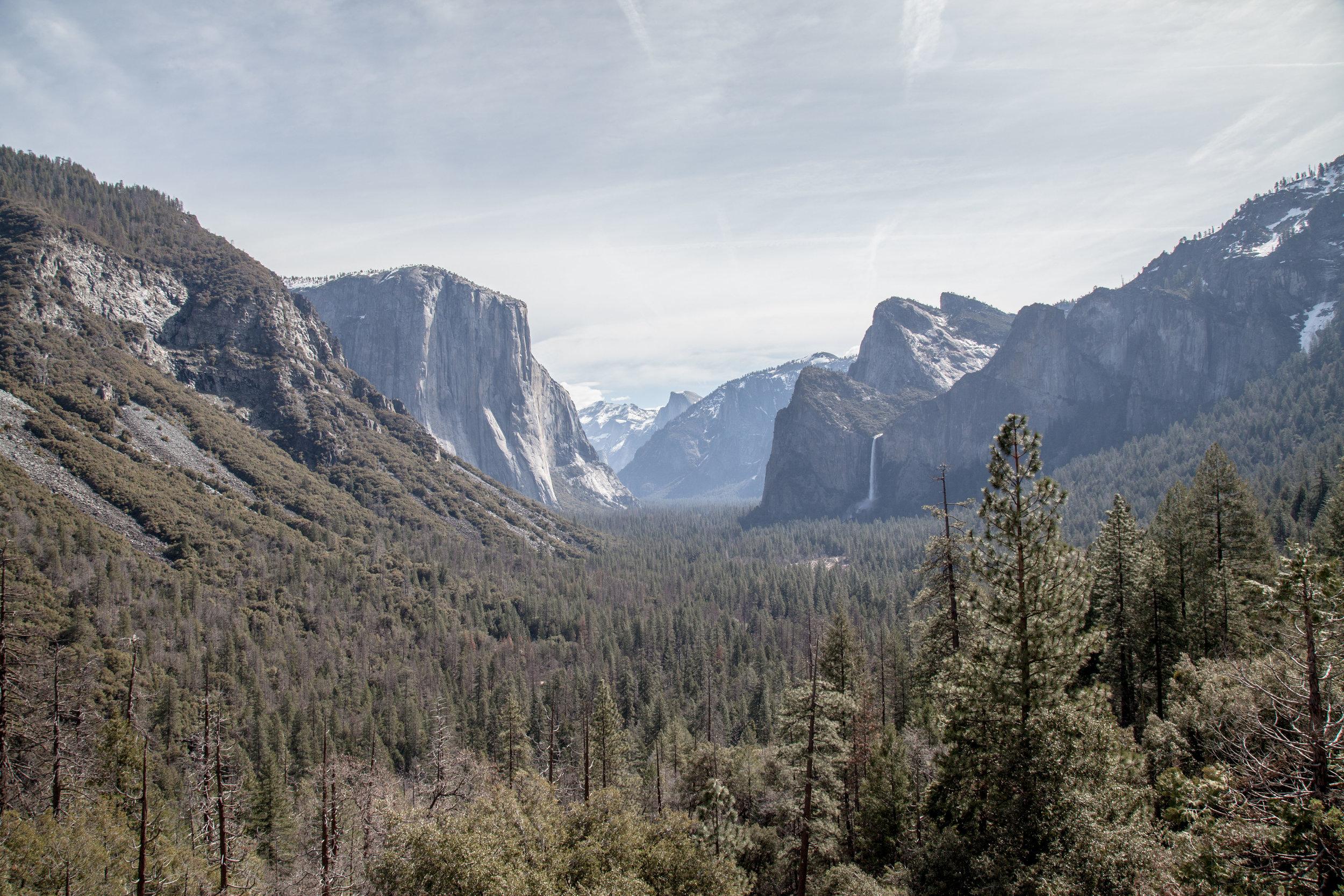 Yosemite1136-829.jpg