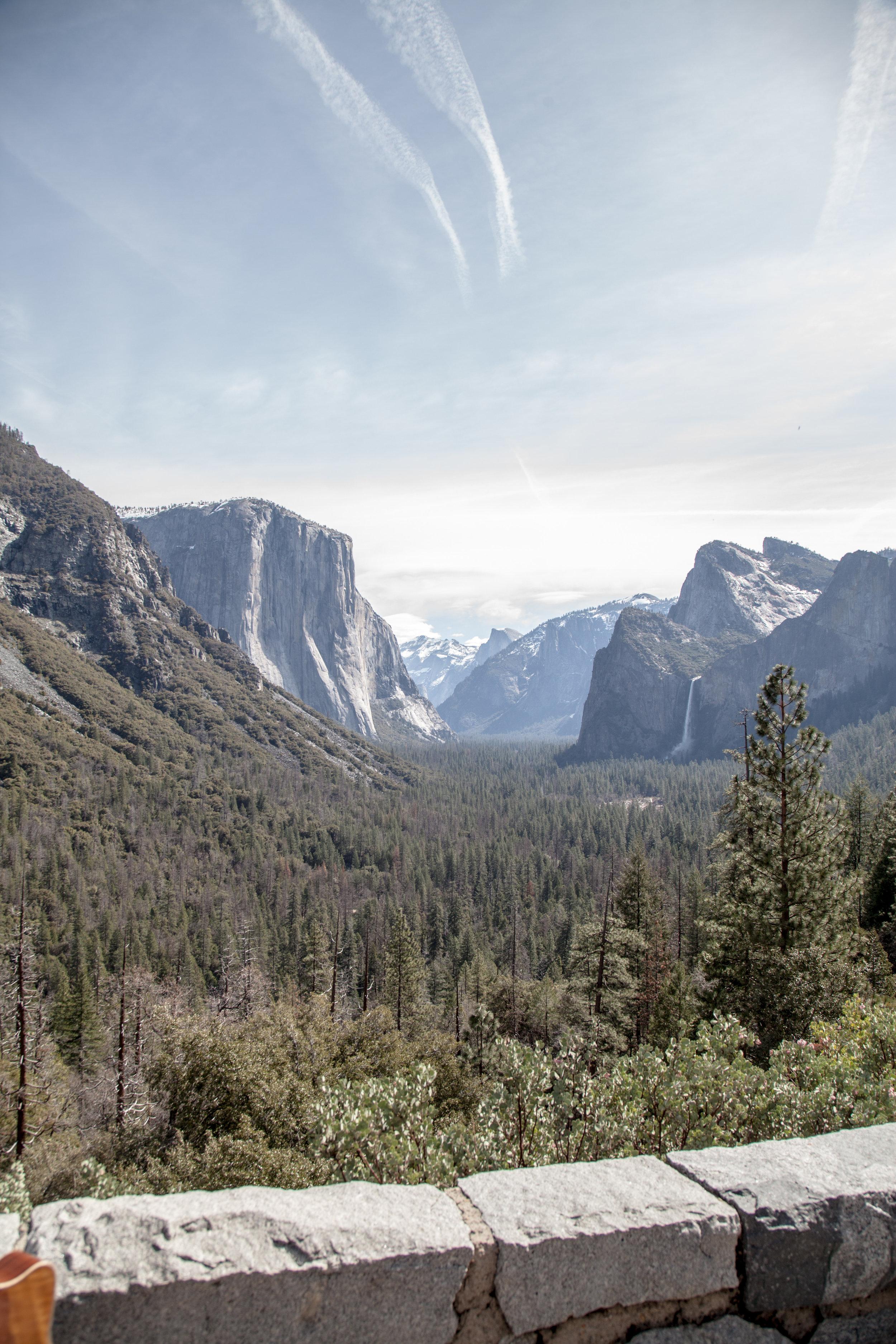Yosemite1136-950.jpg