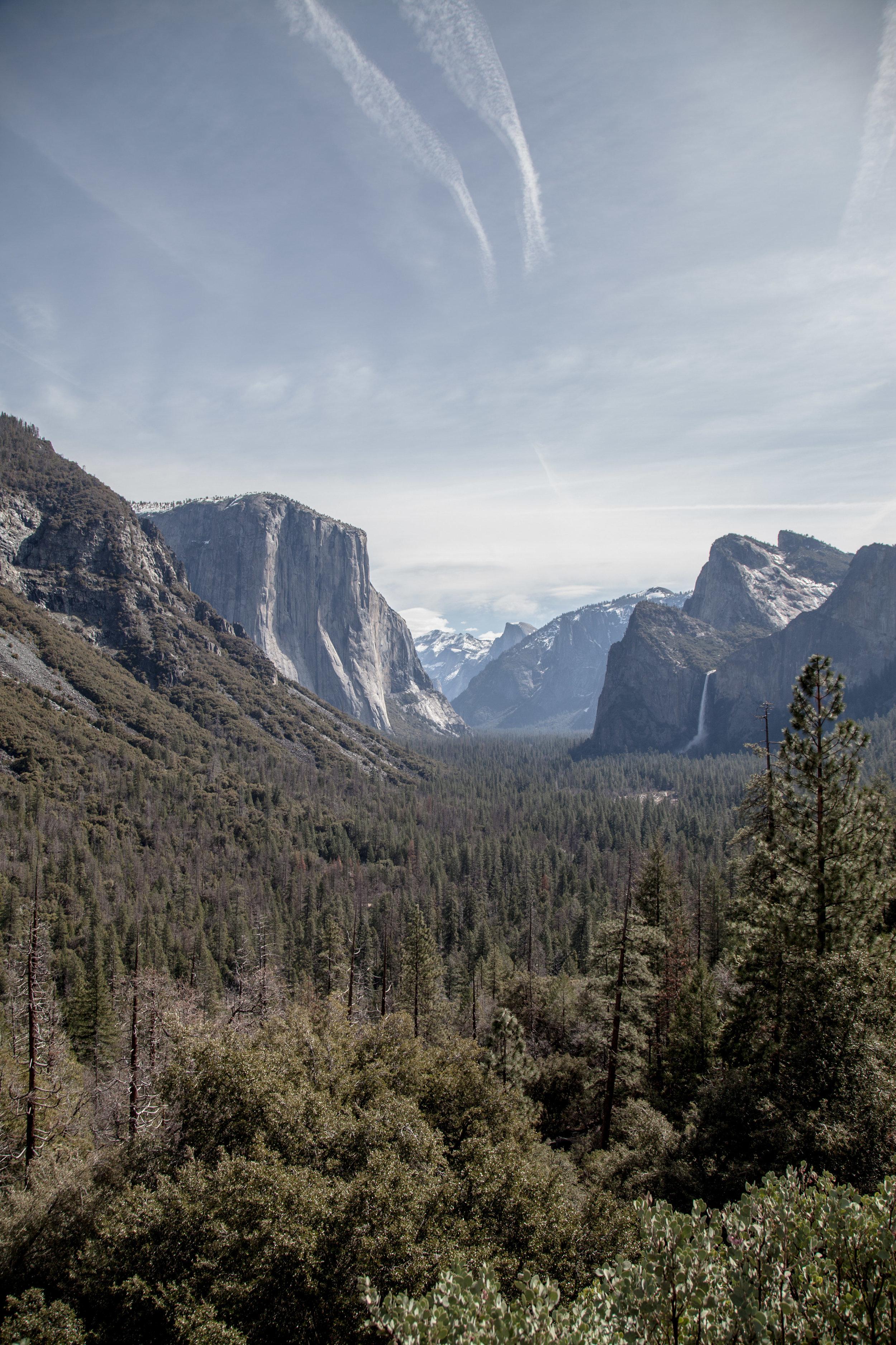 Yosemite1136-952.jpg