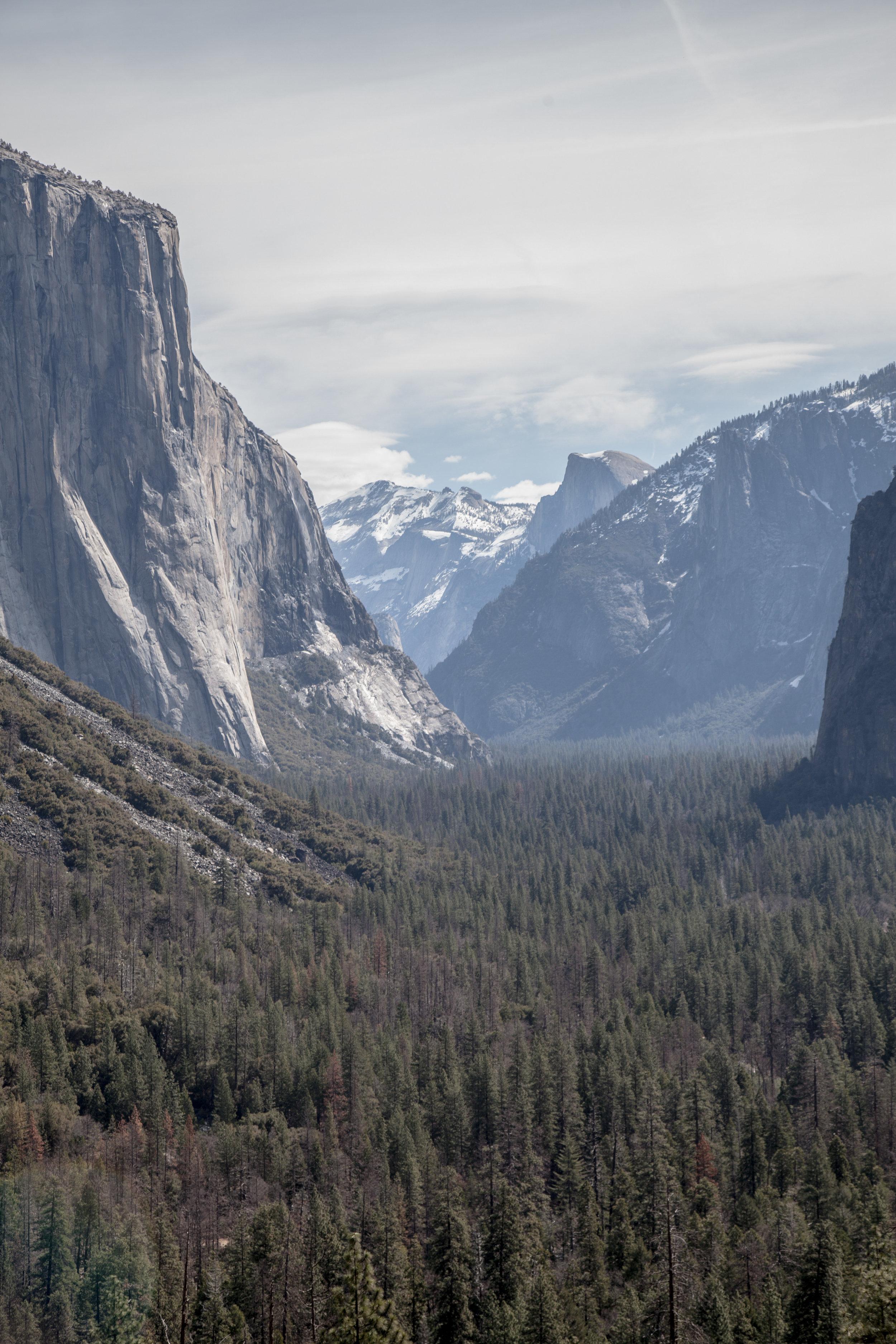 Yosemite1136-956.jpg