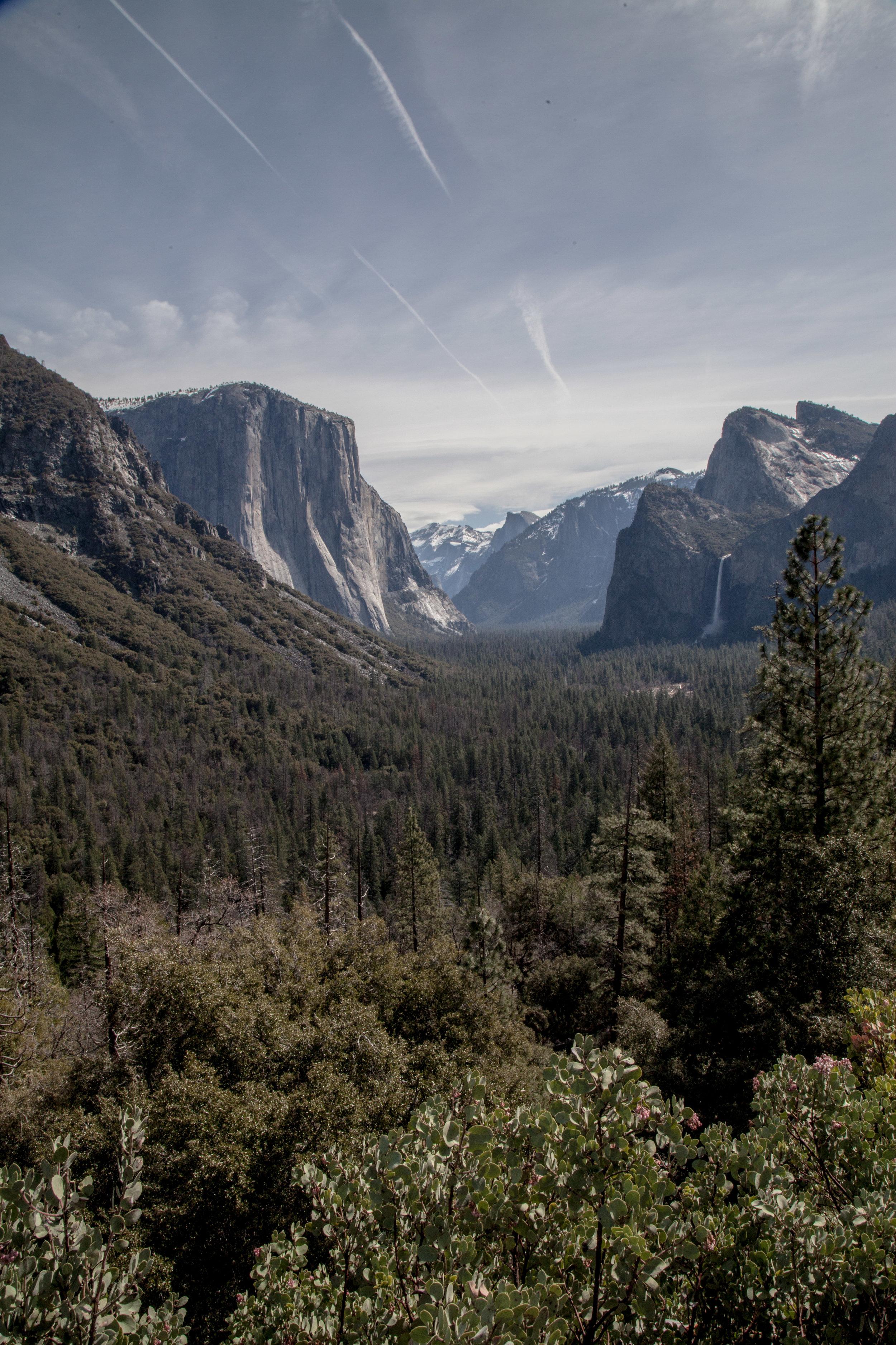Yosemite1136-1039.jpg
