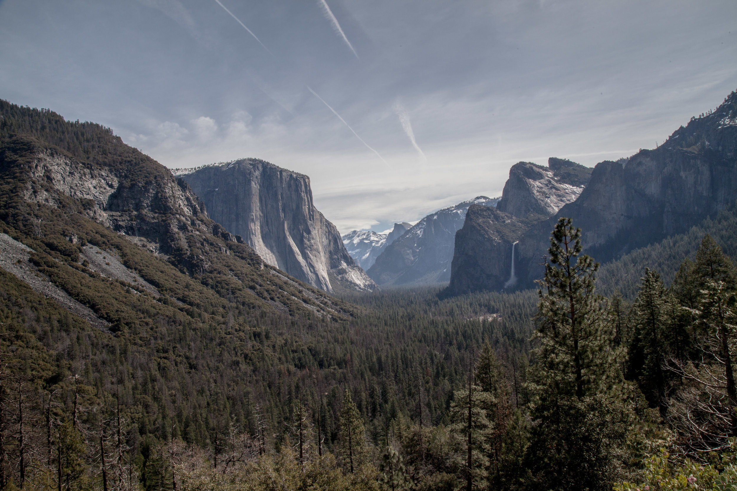 Yosemite1136-1041.jpg