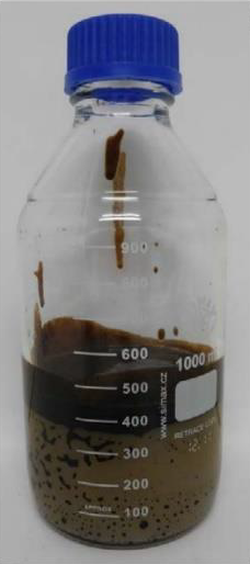 Figure 1: Sample of the oil recovered from Xanadu (Source: TEG)