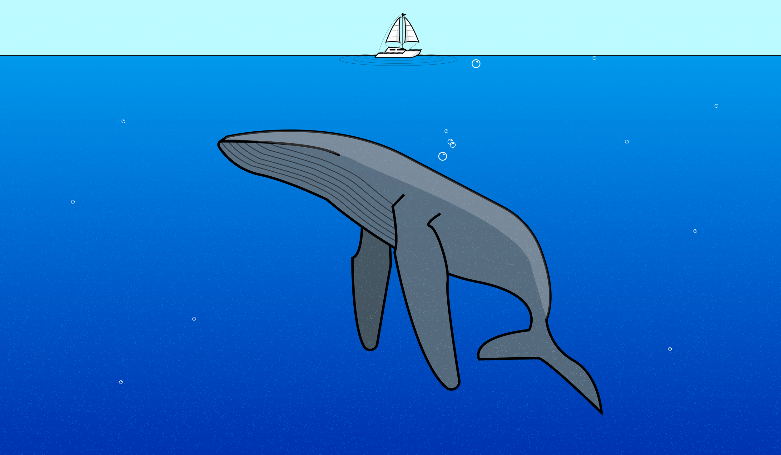 day32-whale-01.png