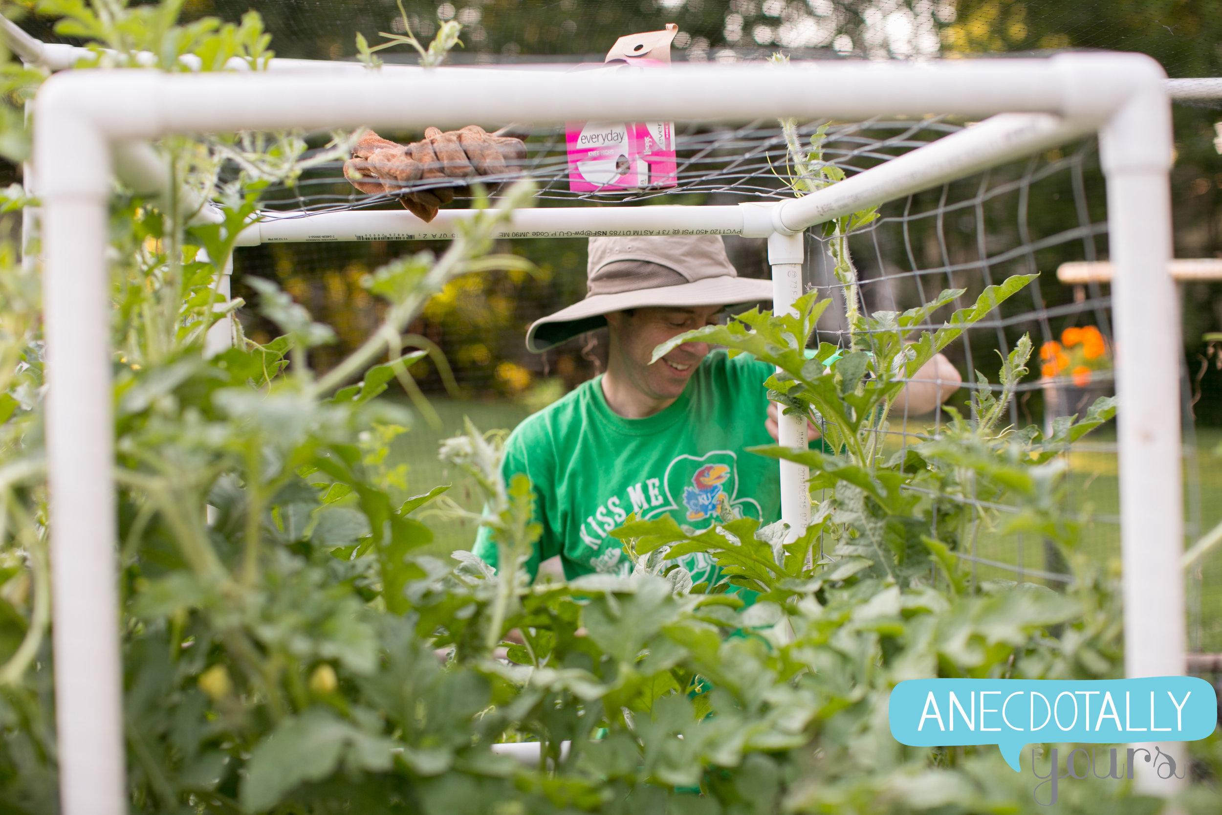 renee-jp-garden-11.jpg
