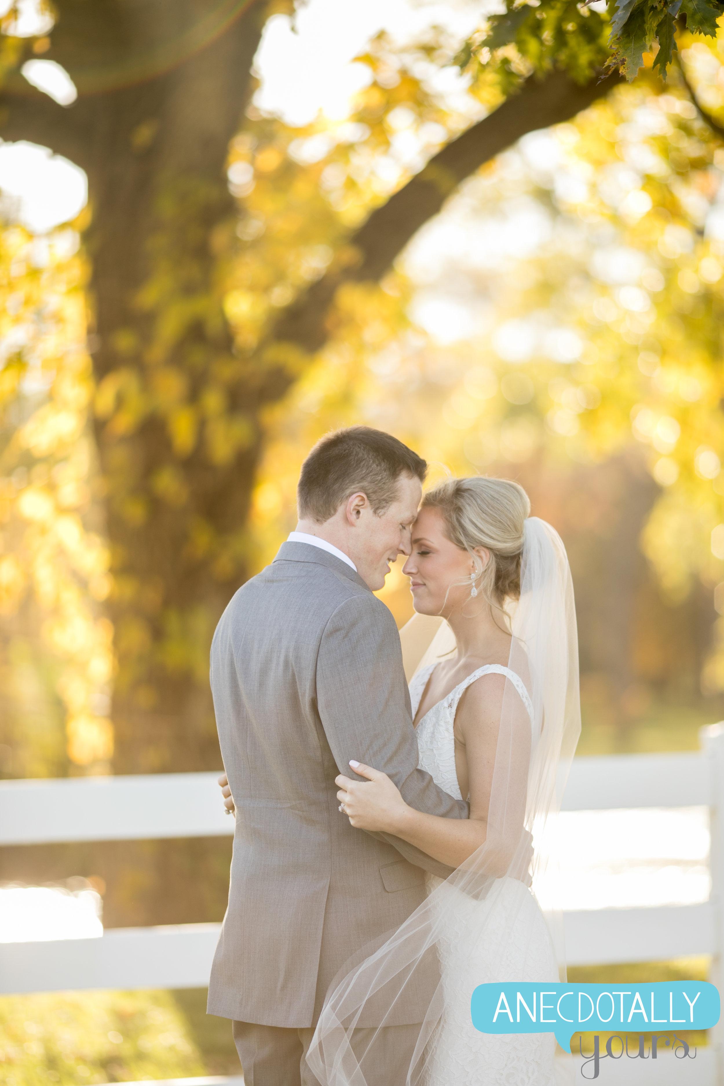 mildale-farm-wedding-126.jpg