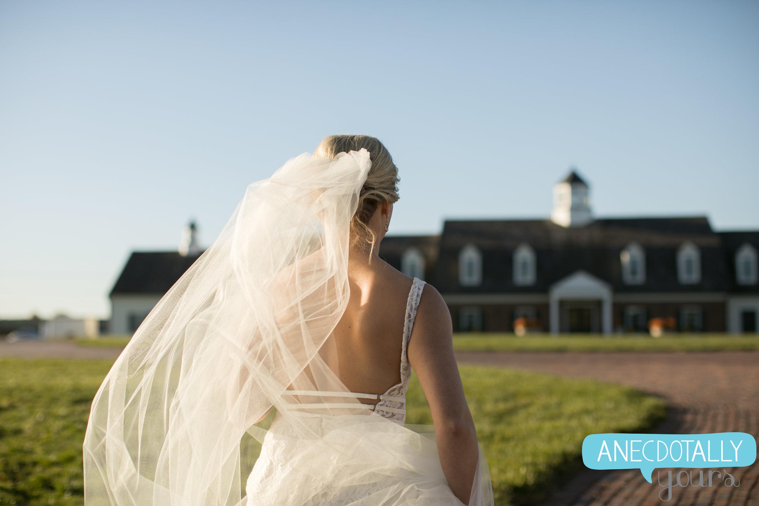 mildale-farm-wedding-135.jpg