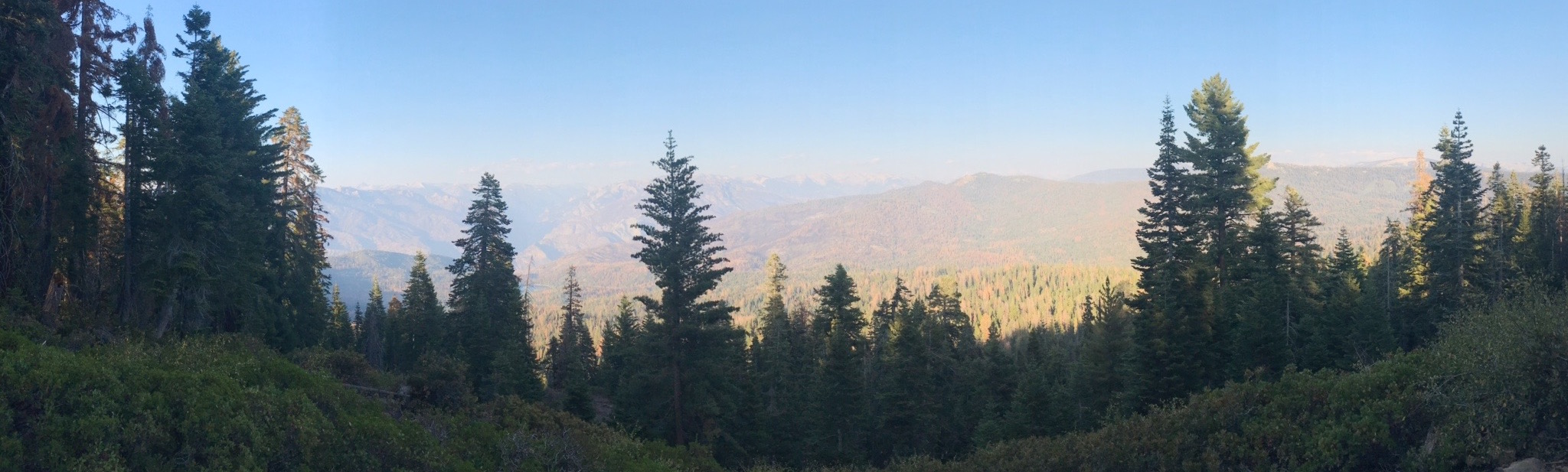 Breathtaking views await you at Sequoia and King's Canyon