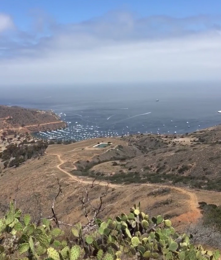 Two Harbors from far away, hiking on the Trans-Catalina Trail on our way to Little Harbor