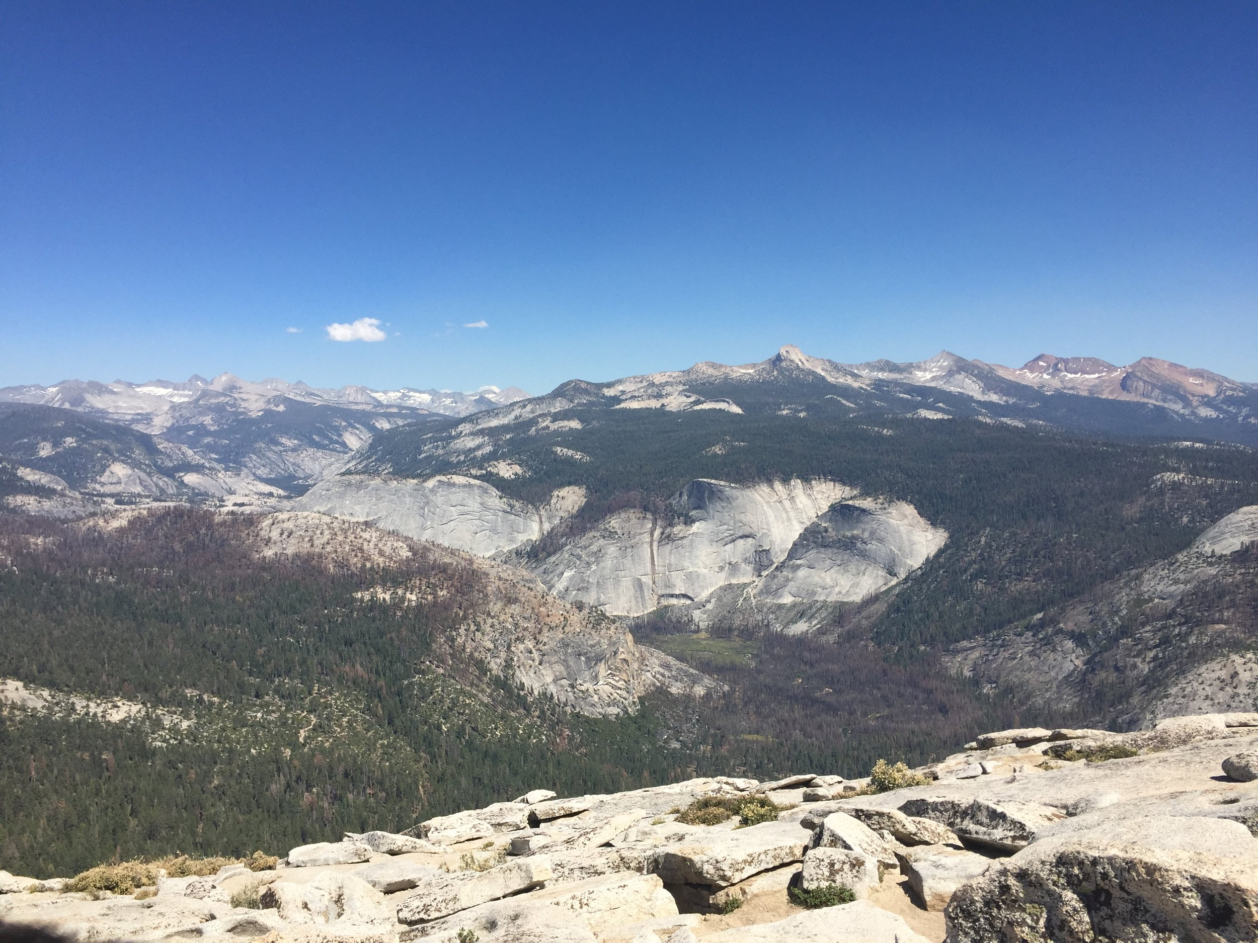 The top of Half Dome - it's even more amazing in person, I promise