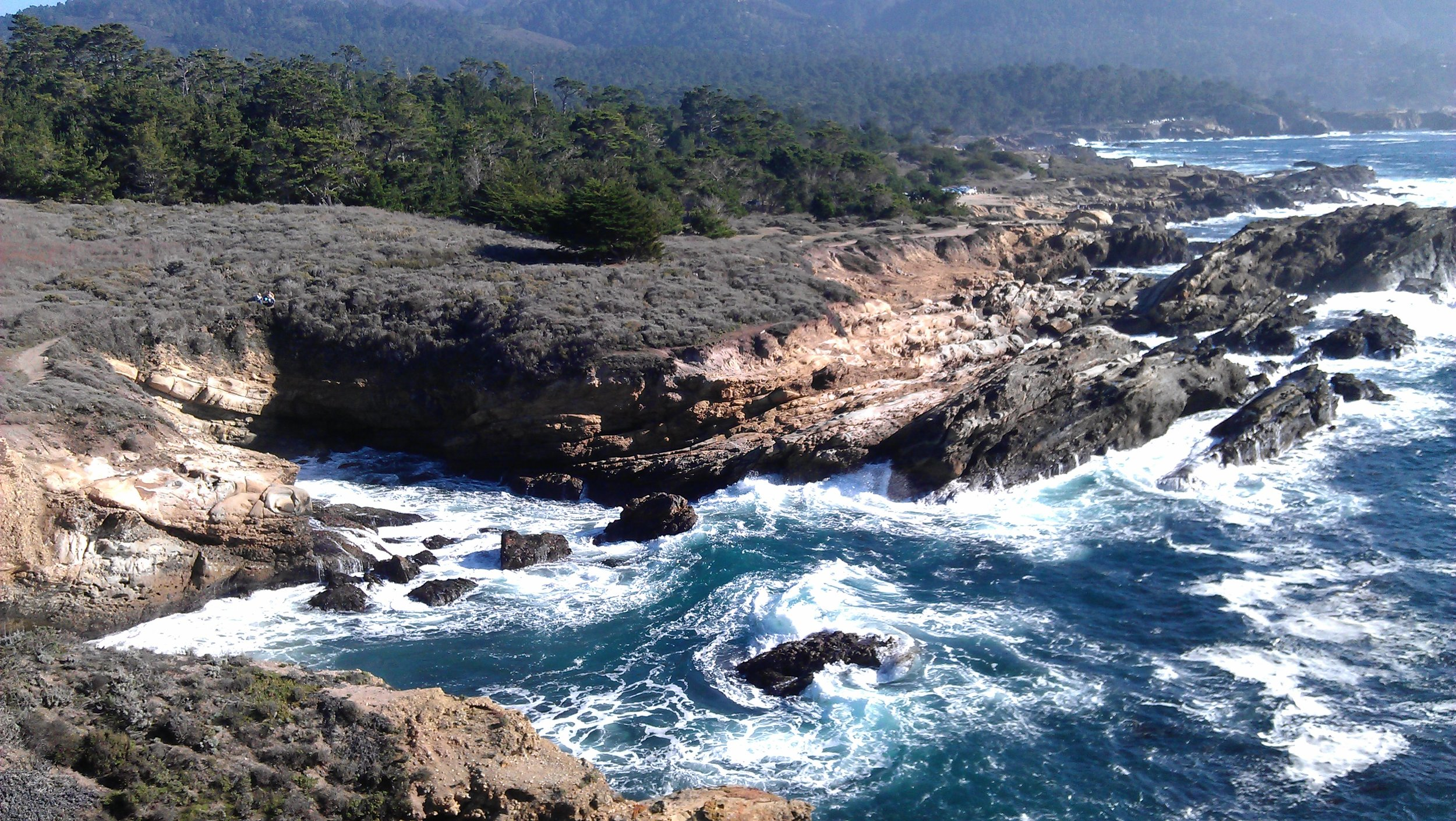 Point Lobos is a great place to spend an afternoon nature hiking