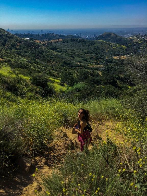 tree-of-life-trail-la-los-angeles