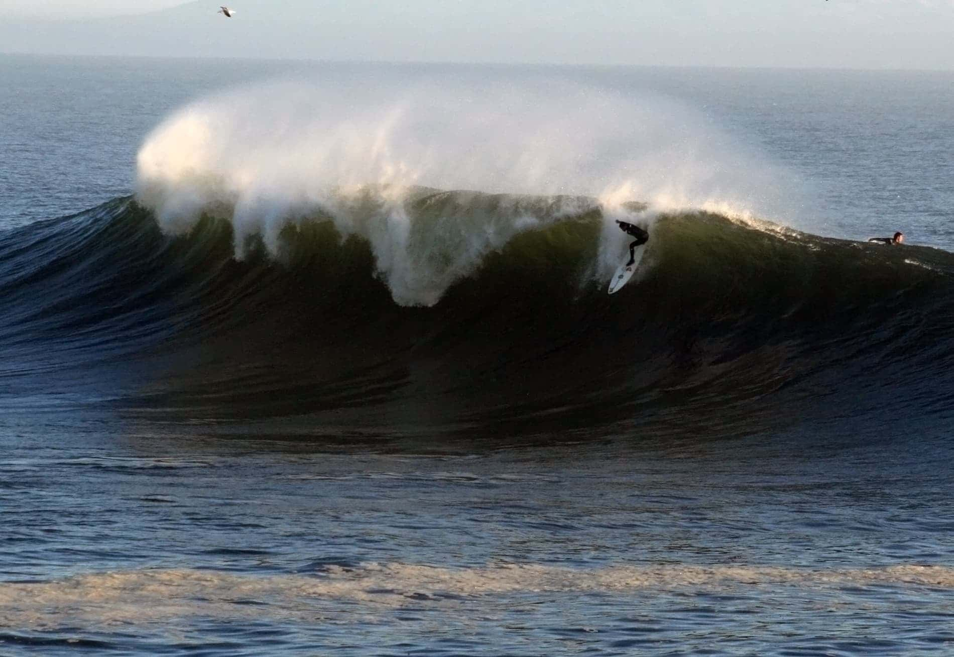 Surfing is one of the best things to do in Santa Cruz